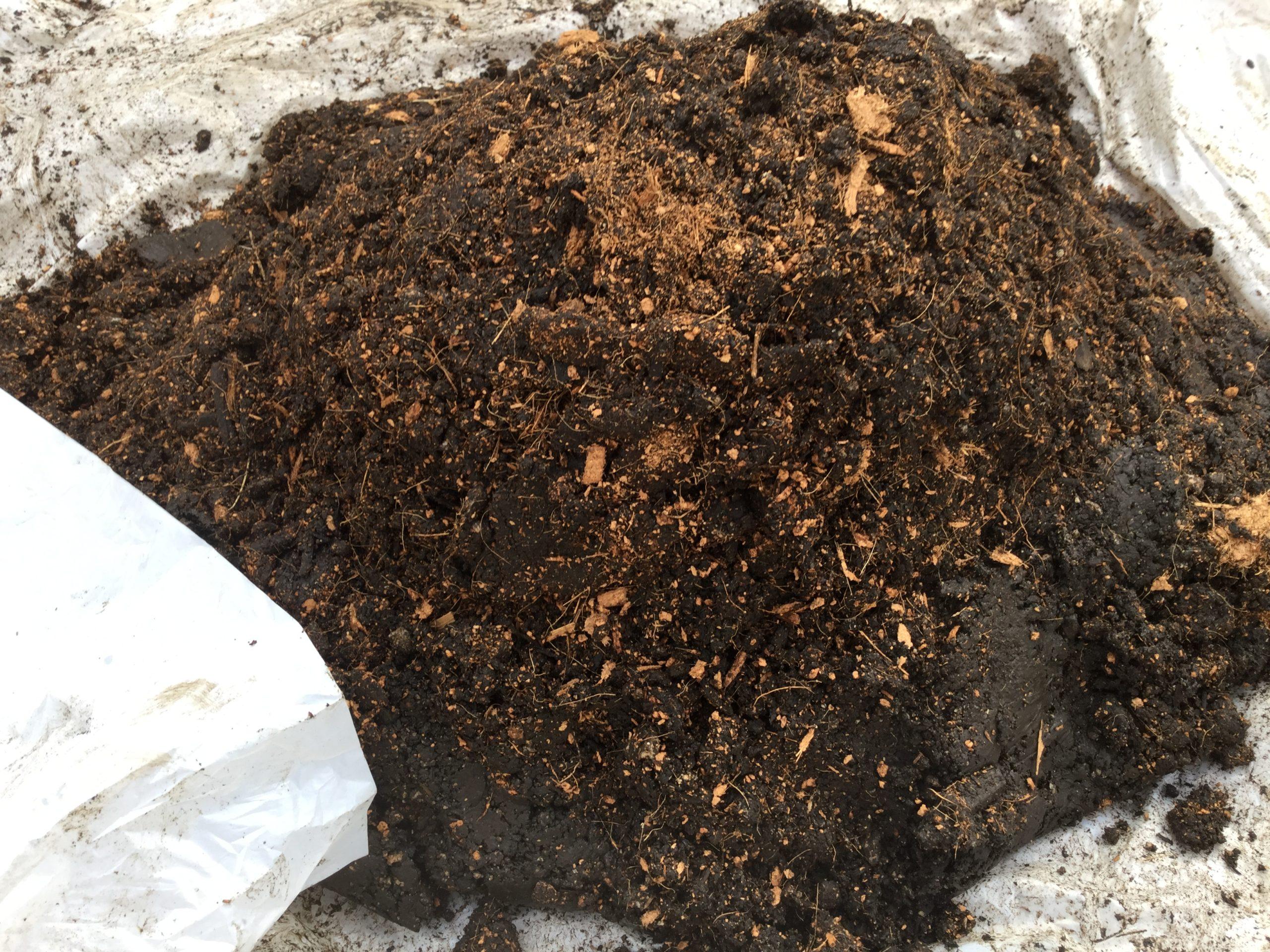 籾殻で土壌改良が必要?市販の土を使ったデメリット!