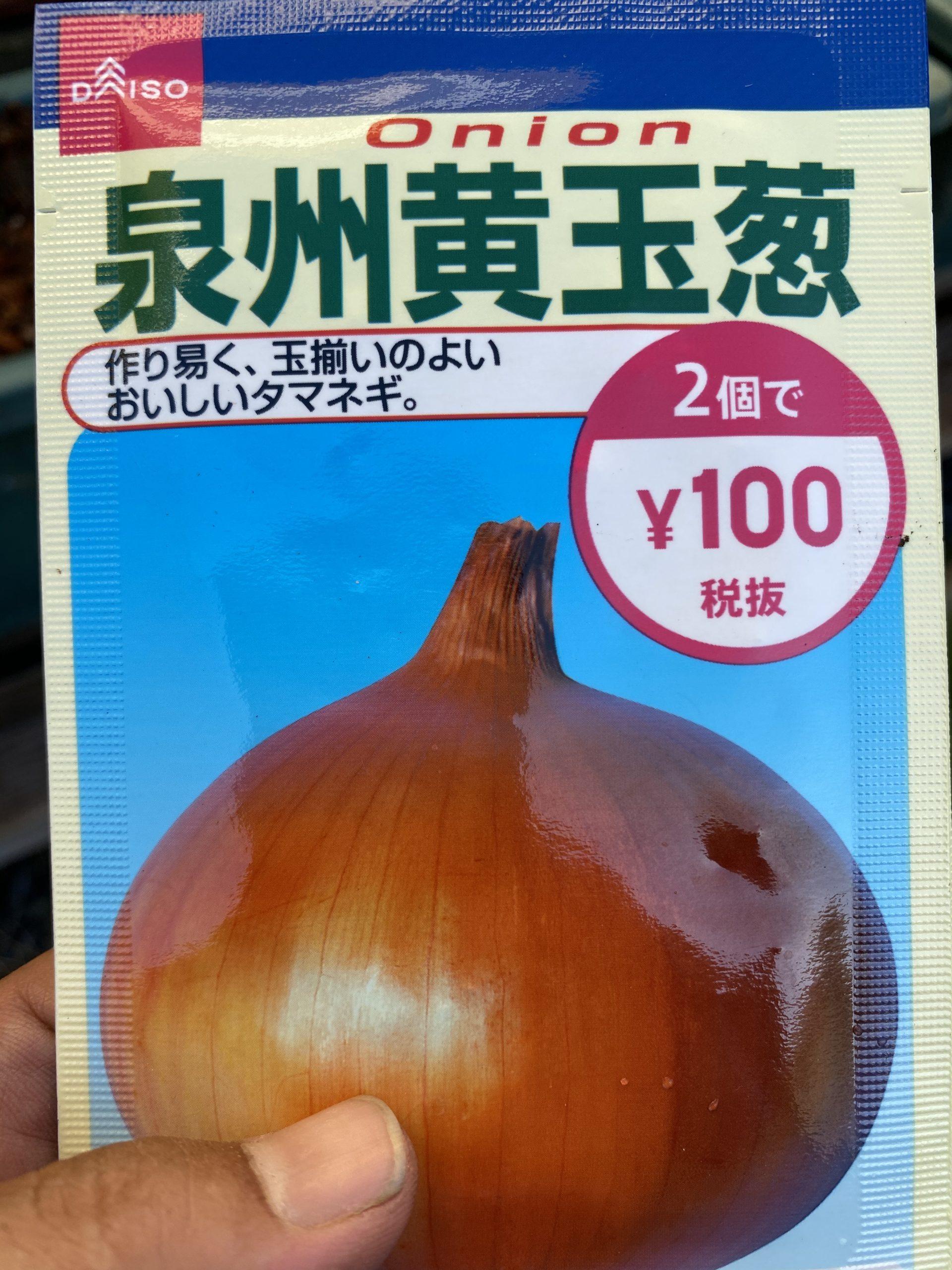 玉ねぎの種