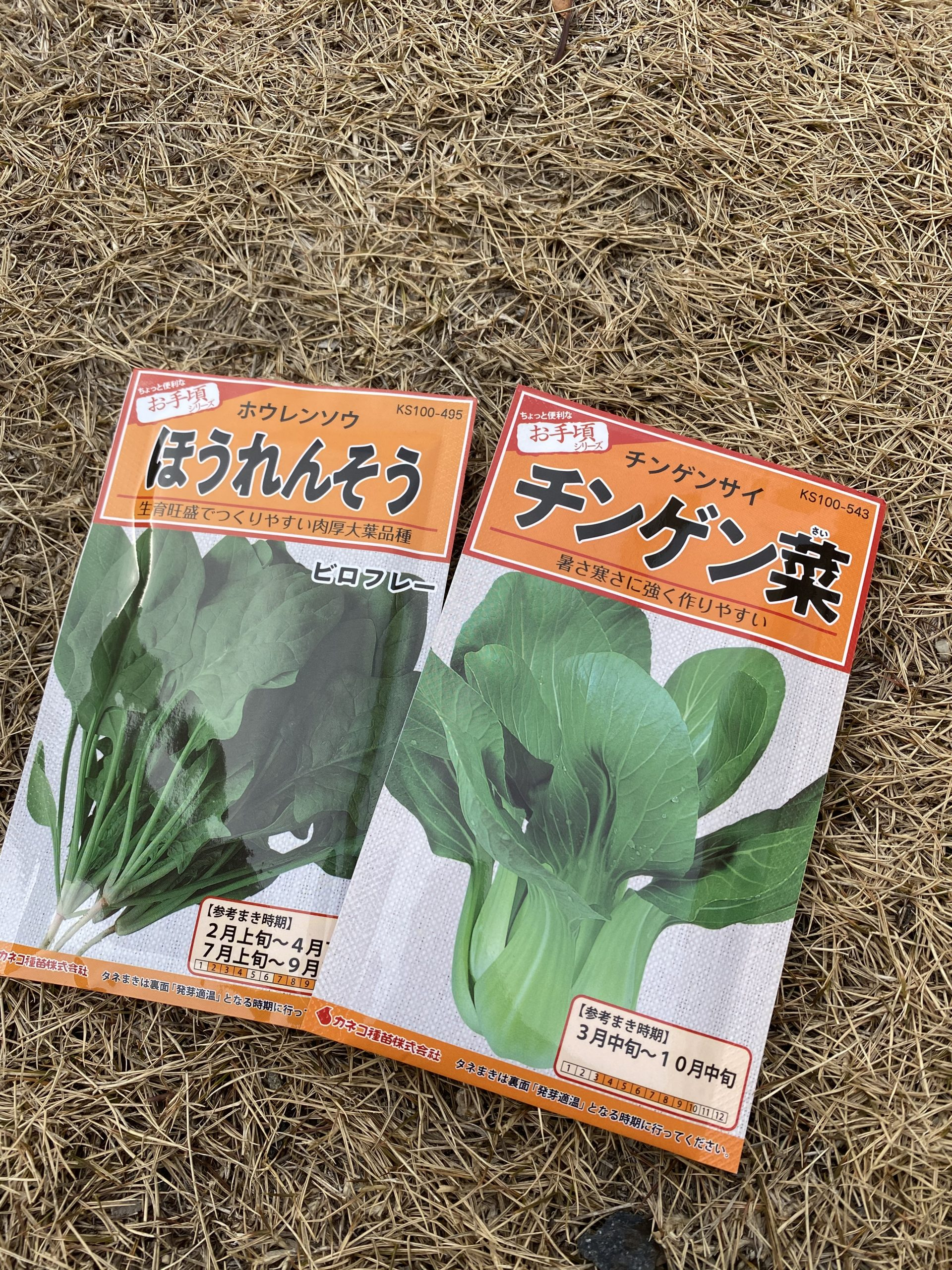 ほうれん草と青梗菜